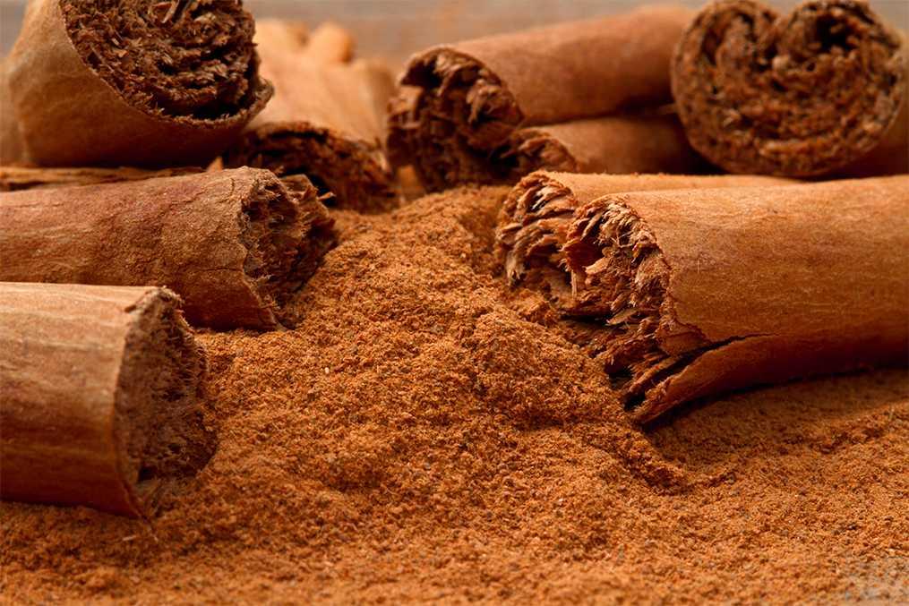 The Sweet Scent of Cinnamon